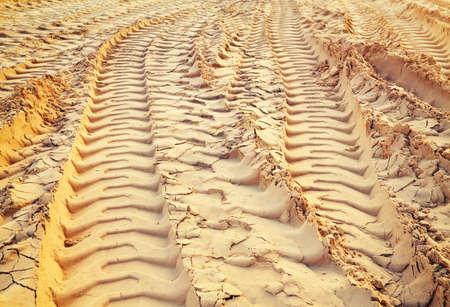 wheel tractor: Tire tracks on the sand. Trace of wheels on the sand