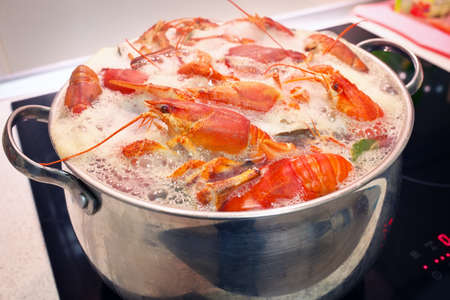 boiling: Fresh crayfish are cooked in a pot with boiling water.