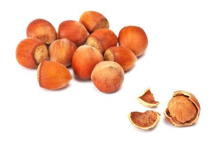 filbert nut: Hazelnut or filbert nut isolated on white background. Stock Photo