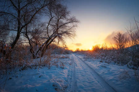 Beautiful winter landscape with sunrise sky, road and trees in snow Stock Photo