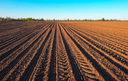 Preparing field for planting. Plowed soil  in spring time with blue sky. Stock Photo