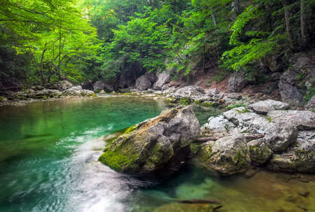 River deep in mountain at summer. Water stream at forest. Composition of nature Standard-Bild
