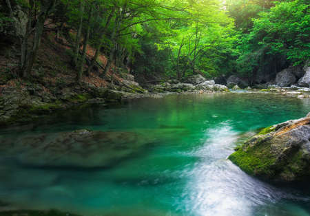 landscape: River deep in mountain at summer. Water stream at forest. Composition of nature