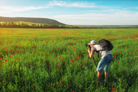 Photographer taking pictures of field with poppies during sunset