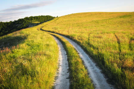 Summer landscape with green grass, road and trees Stock Photo