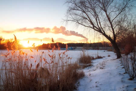 Winter landscape with sunset sky. Composition of nature.