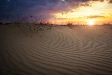 Beautiful Landscape with sunset sky and wavy sand. Composition of nature 写真素材