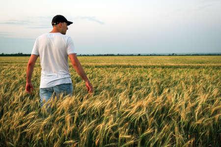 Granjero de sexo masculino de pie en un campo de trigo durante la puesta de sol. El hombre disfruta de la naturaleza