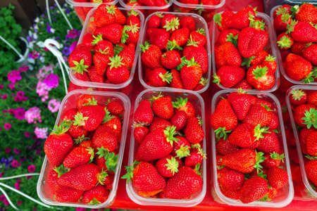 Tasty juicy strawberry berries in boxes, on the market and flowers