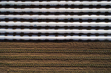 Agricultural Surface covered with plastic film. Field for growing vegetables. Aerial view