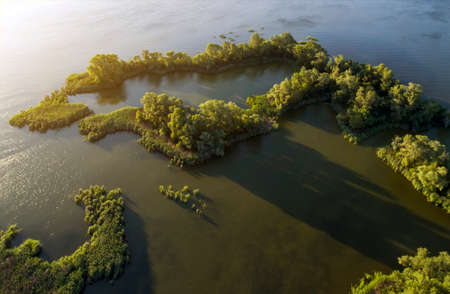 Swampy lake, island, aerial photography, on a summer day, background image Imagens