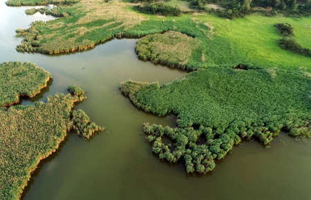 Swampy lake, aerial photography, on a spring day, background image