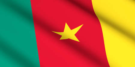 flag of Cameron cameroonian 3D