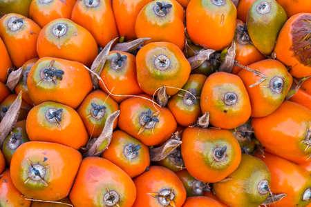 red palm oil: Semi di palma da olio, maturo e rosso