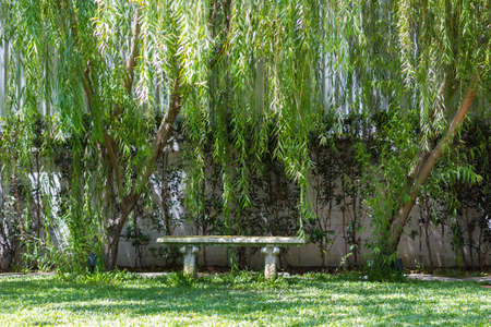 Romantic bench in paceful park in spring
