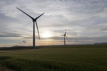 Wind farm in a field at sunset Stock Photo