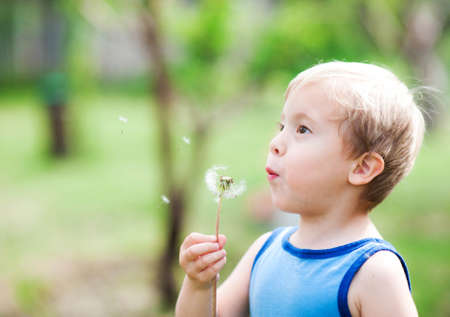 Cute boy blowing on a dandelion on a background of nature photo