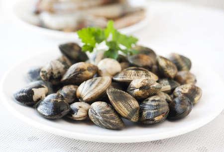 raw, large shells