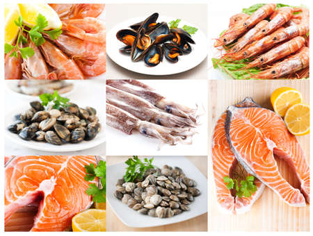 fishery products: Collage of fishery products Stock Photo