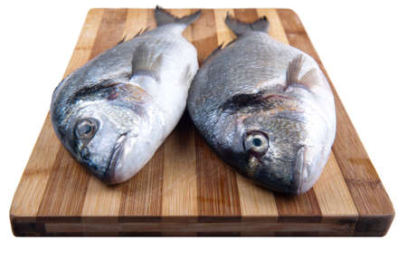 two fresh sea bream on a cutting board on the isolation of a white background photo