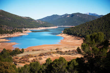 landscape of green forest and blue lake