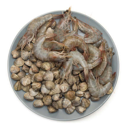 raw shrimp and seashells on grey plate and white background