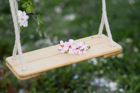 Hanging swings on a background of green grass with flying almonds.