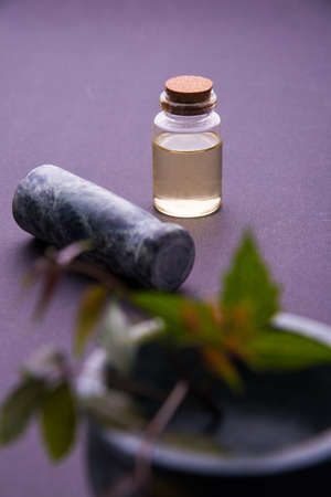 antibacterial soap: Ayurvedic Herbs Neem with Oil in bottle with mortar