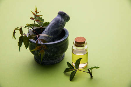 neem: Ayurvedic Herbs Neem with Oil in bottle with mortar