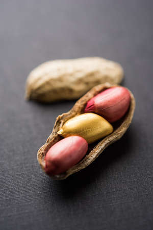 Concept of individuality, luck,value,exclusivity and better choice. Golden peanut or ground nut, standing out amongst normal peanuts, over black or white background