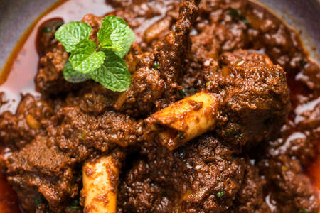 Bhuna  Mutton / Bhuna Gosht / Indian lamb curry Stok Fotoğraf - 91533673