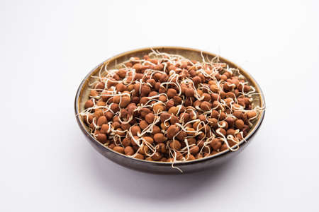 Sprouted Kala Chana or Black or brown Chickpeas - it's a vegan substitute for rich protein and it has high content of living enzymes