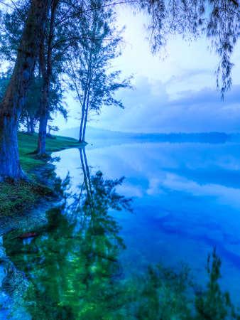 푸른 녹색 새벽