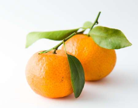 Two Tangerines with Leaves