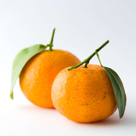 Pair of Tangerines