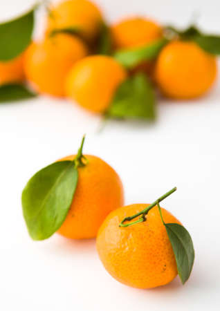Isolated Tangerine Pair