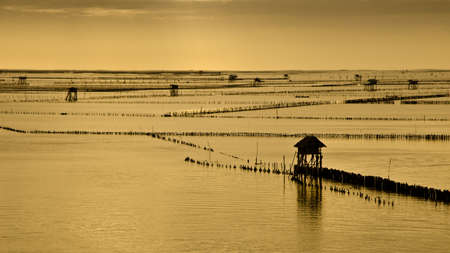 Bang Tabun, Phetchaburi, Thailand photo