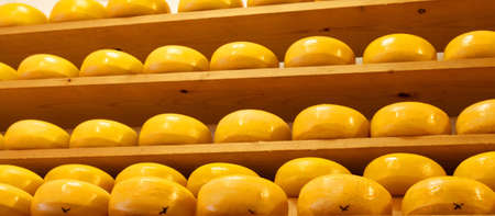 shelfs: Round yellow cheese on several shelfs one by one Stock Photo