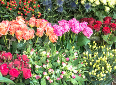 selections: Selections of Fresh Flowers on Display Stock Photo