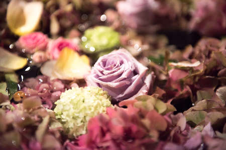 Assorted summer flowers in a full frame background with hydrangeas and roses viewed close up from above in a floral display