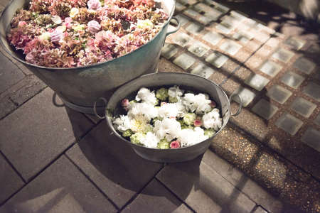 galvanised: Rustic galvanised pails filled with summer flowers Stock Photo