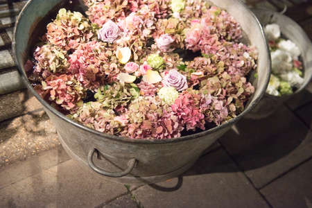 Cut Flowers in Pails of Water