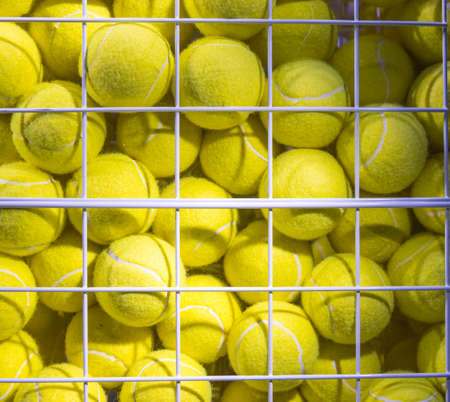 Bright Fluorescent Yellow Tennis Balls in metal Mesh Cage 版權商用圖片 - 121436799