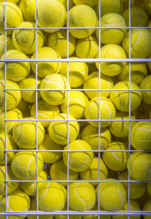 Bright Fluorescent Yellow Tennis Balls in metal Mesh Cage 版權商用圖片 - 121436804