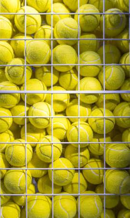 Bright Fluorescent Yellow Tennis Balls in metal Mesh Cage 版權商用圖片 - 121436805