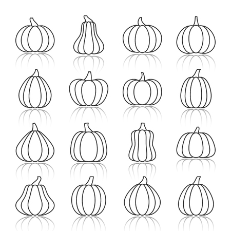 Pumpkin black thin line with reflection shadow icon set. Gourd vector linear symbol pack. Squash outline sign. Simple pictogram graphic collection. Concept web, tag, banner, label, card element design