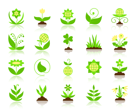 Garden flat icons set. Web vector sign kit of flower. Plant pictogram collection includes chamomile, tulip, narcissus. Simple garden colorful icon symbol with reflection isolated on white Illustration