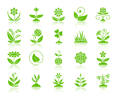 Garden green silhouette icons set. Web sign kit of flower. Plant monochrome pictogram collection includes tulip, clover, lily of the valley. Simple garden symbol reflected. Vector Icon shape isolated