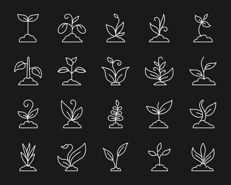 Grass thin line icons set. Outline monochrome web sign kit of organic plant. Sprout linear icon collection includes soybean, wheat, coffee. Simple grass white contour symbol vector Illustration Stock Illustratie