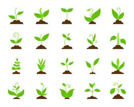Gras plat pictogrammen instellen. Webtekenpakket van plant. Organische spruit van plantenpictogramverzameling omvat jonge boom, groei, struik. Eenvoudig gras cartoon kleurrijke pictogram symbool geïsoleerd op wit. Vector illustratie Vector Illustratie